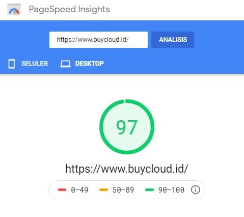 Google Pagespeed Insight2